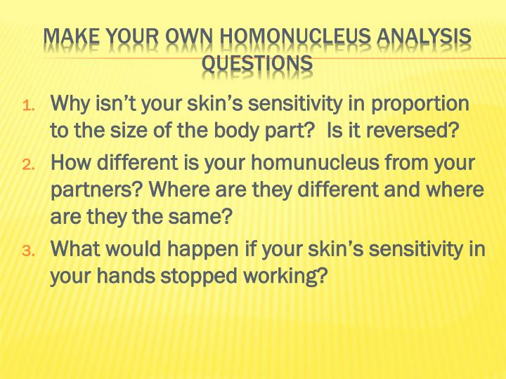 Why isn't your skin's sensitivity in proportion to the size of the body part?  Is it reversed?