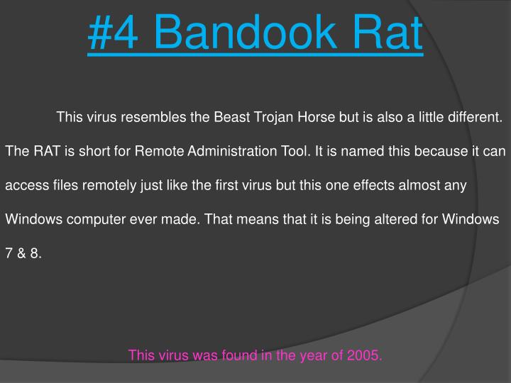 #4 Bandook Rat