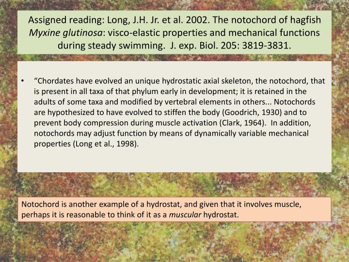 Assigned reading: Long, J.H. Jr. et al. 2002. The notochord of hagfish