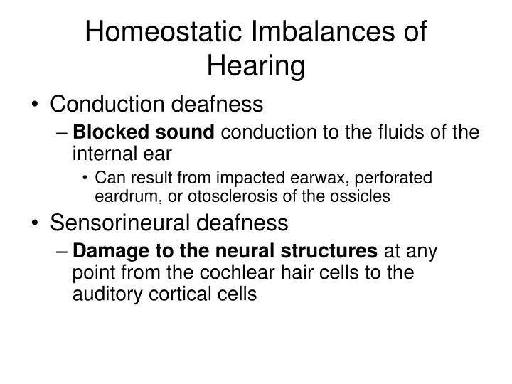 Homeostatic Imbalances of Hearing