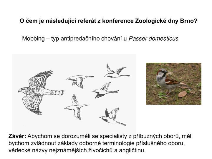 O čem je následující referát z konference Zoologické dny Brno?