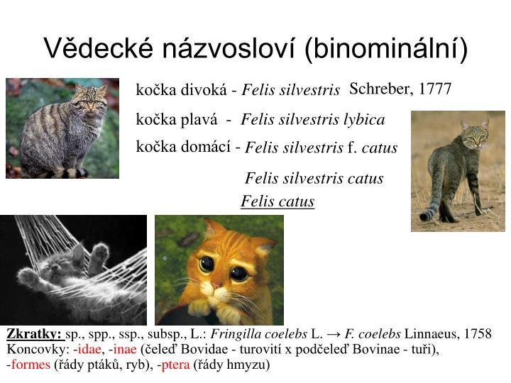 Vědecké názvosloví (binominální)