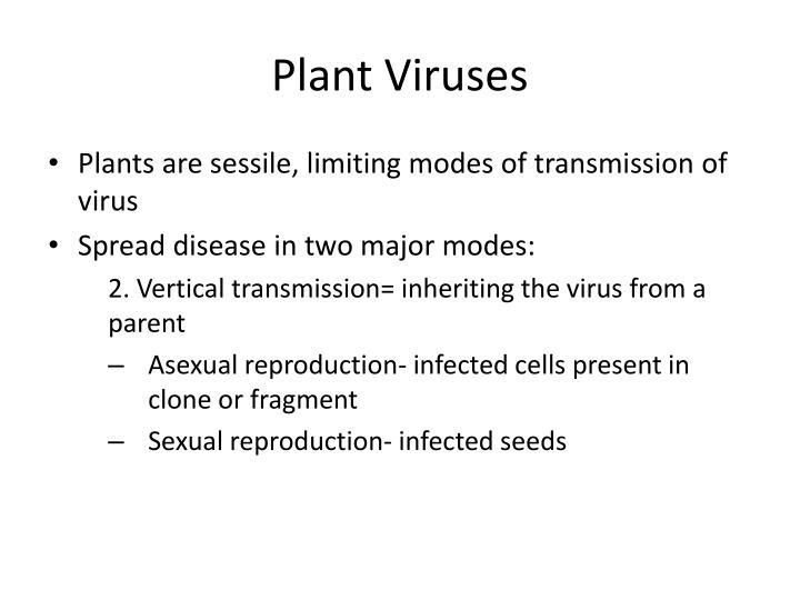 Plant Viruses