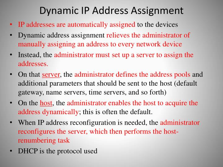 Dynamic IP Address Assignment
