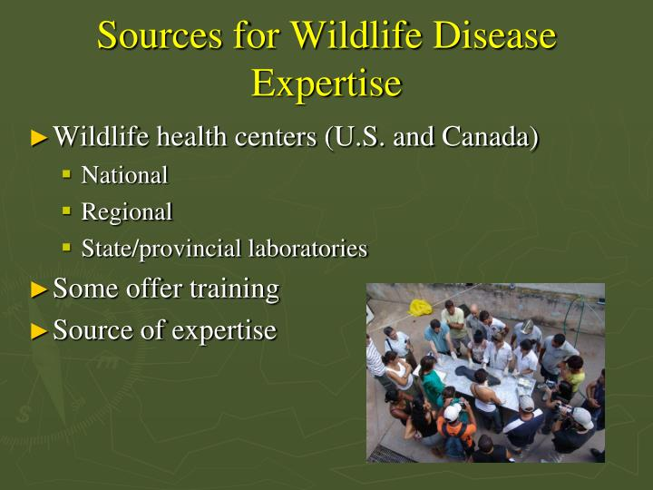 Sources for Wildlife Disease Expertise