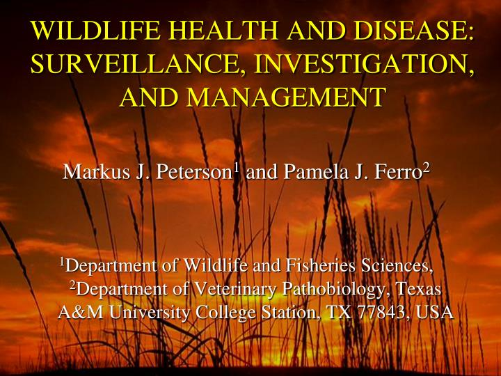 WILDLIFE HEALTH AND DISEASE:  SURVEILLANCE, INVESTIGATION, AND MANAGEMENT