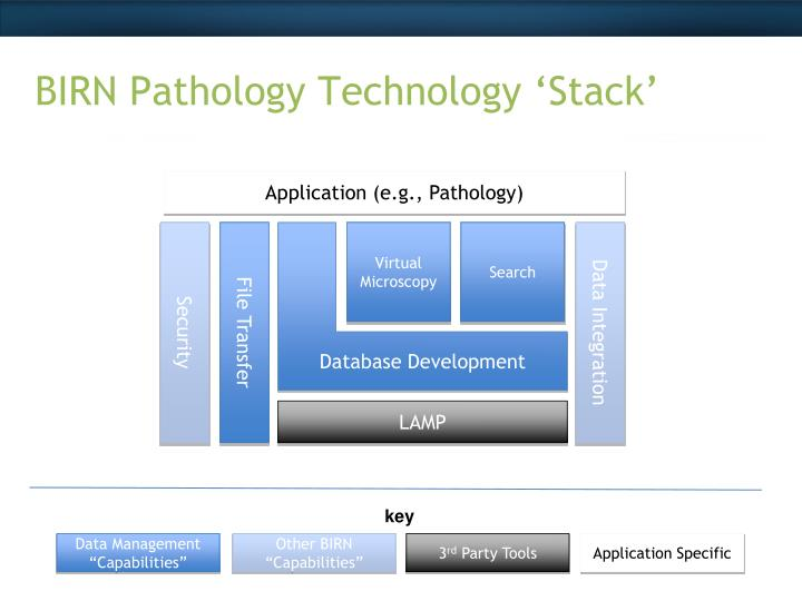 BIRN Pathology Technology 'Stack'