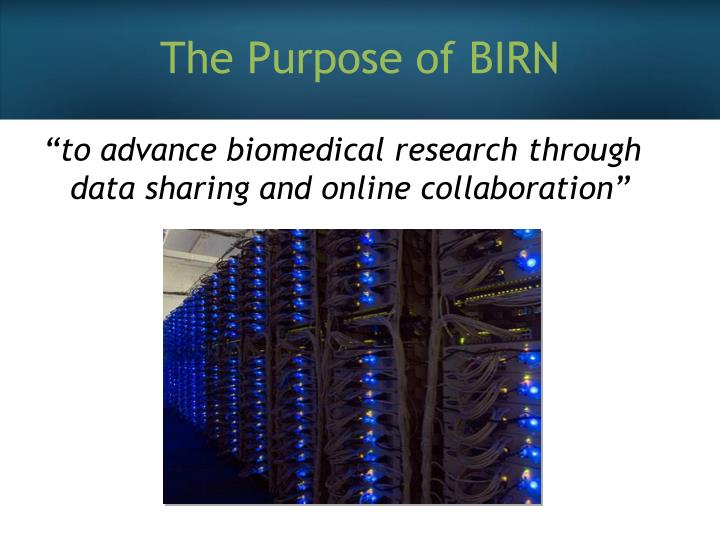 The Purpose of BIRN