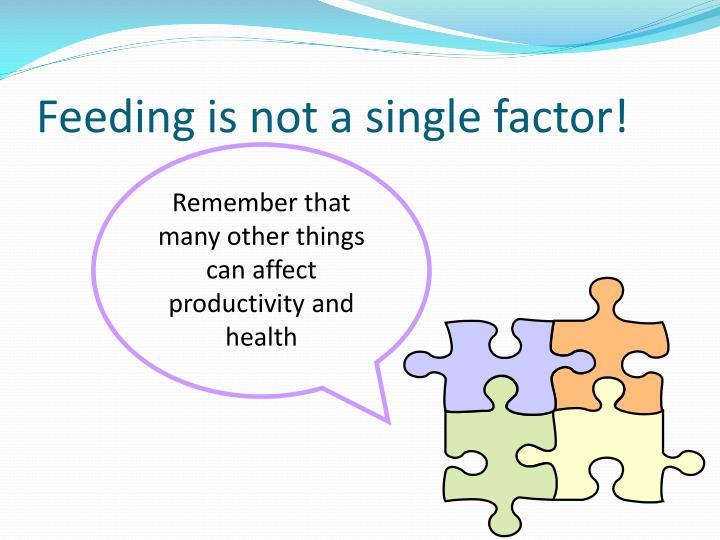 Feeding is not a single factor!