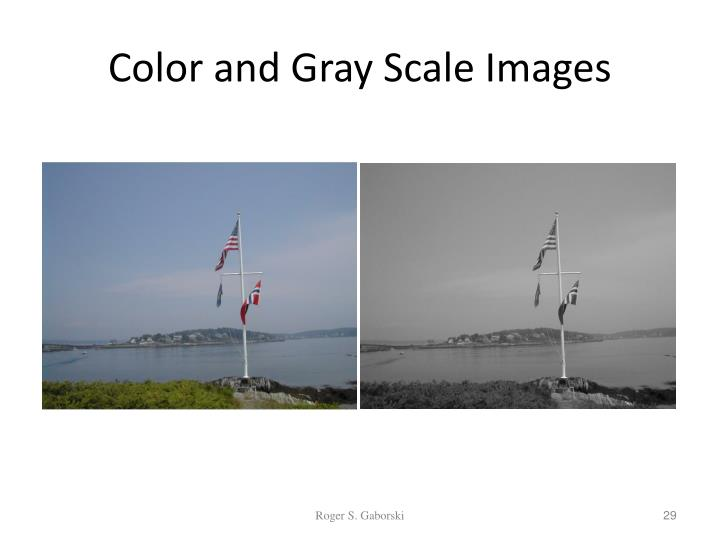 Color and Gray Scale Images