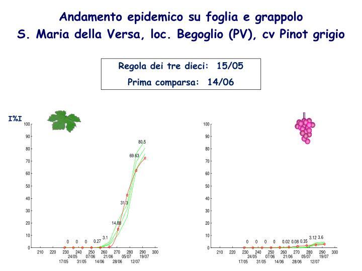 Andamento epidemico su foglia e grappolo