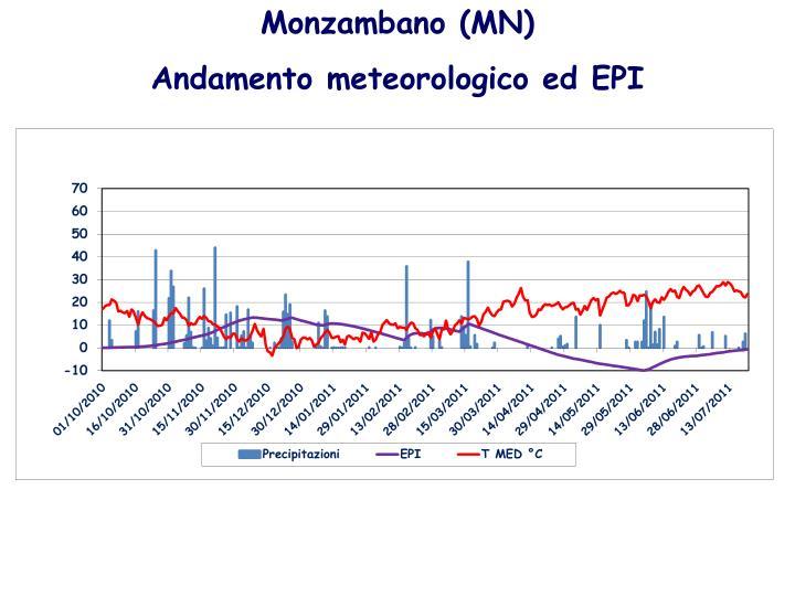 Monzambano (MN)