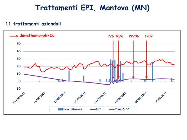 Trattamenti EPI, Mantova (MN)