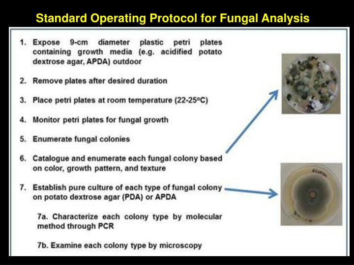 Standard Operating Protocol for Fungal Analysis