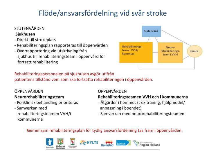 Flöde/ansvarsfördelning vid svår stroke