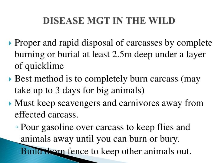 DISEASE MGT IN THE WILD