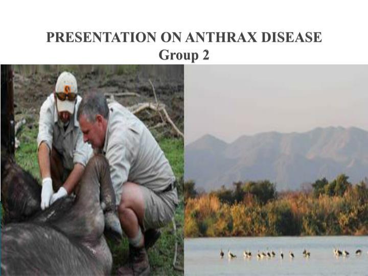 Presentation on anthrax disease group 2