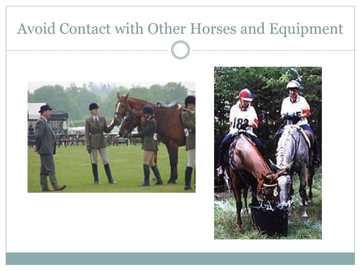 Avoid Contact with Other Horses and Equipment