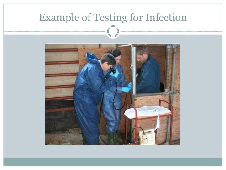Example of Testing for Infection