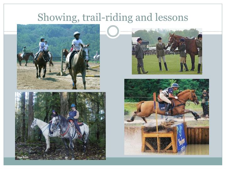 Showing, trail-riding and lessons