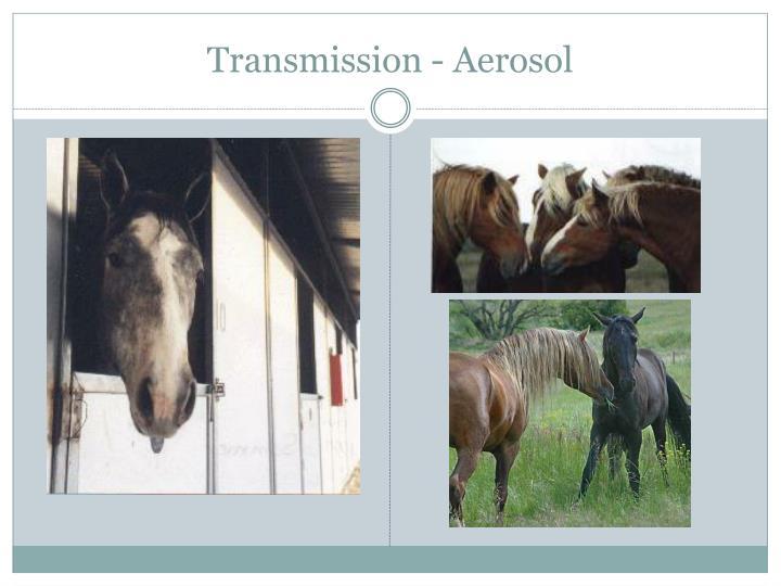 Transmission - Aerosol
