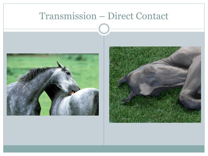 Transmission – Direct Contact