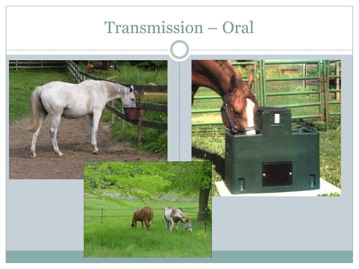 Transmission – Oral