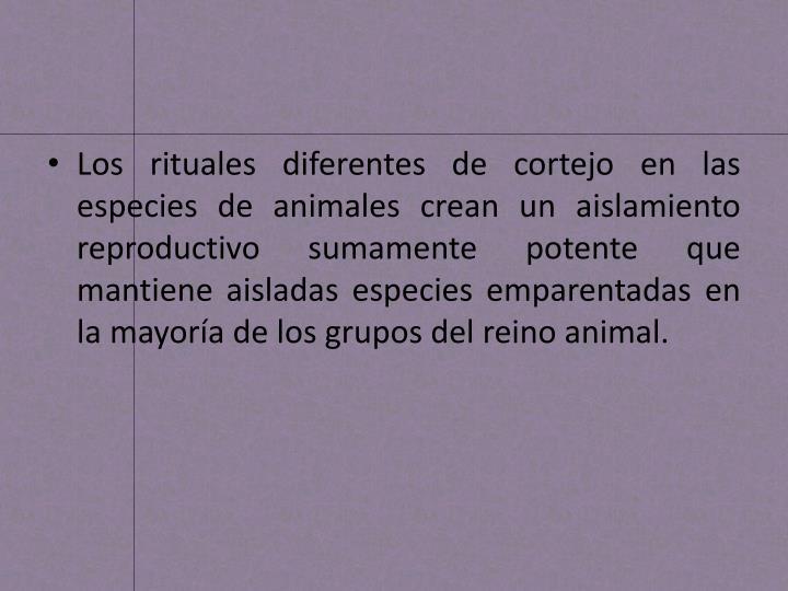 Los rituales diferentes de cortejo en las especies de animales crean un aislamiento reproductivo sumamente potente que mantiene aisladas especies emparentadas en la mayoría de los grupos del reino animal