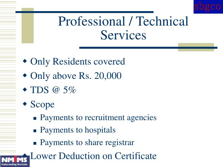 Professional / Technical Services