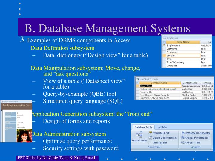 B. Database Management Systems