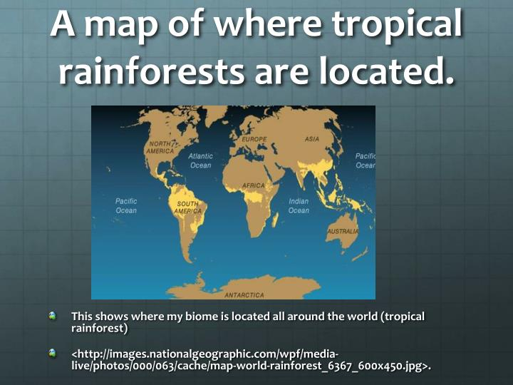 A map of where tropical rainforests are located