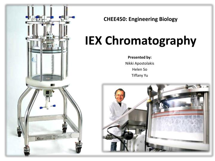 Iex chromatography