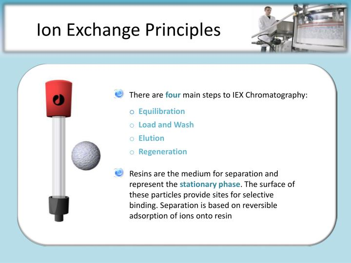 Ion exchange principles