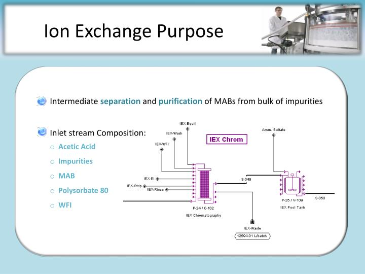 Ion Exchange Purpose