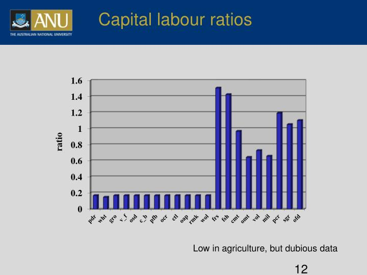 Capital labour ratios