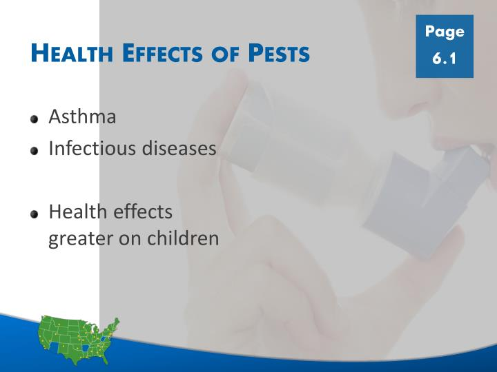 Health effects of pests
