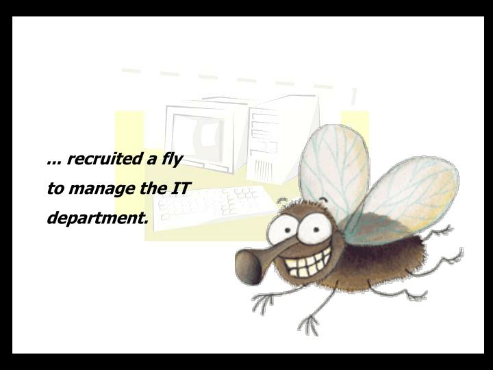 ... recruited a fly