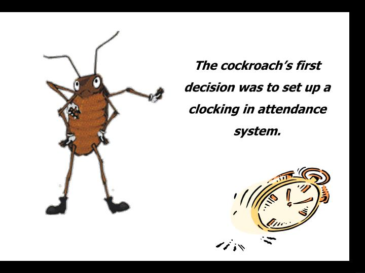 The cockroach's first decision was to set up a  clocking in