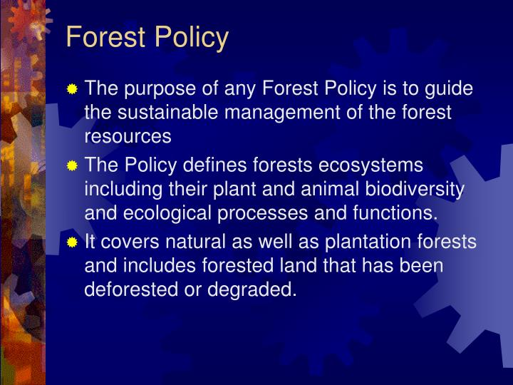 Forest Policy