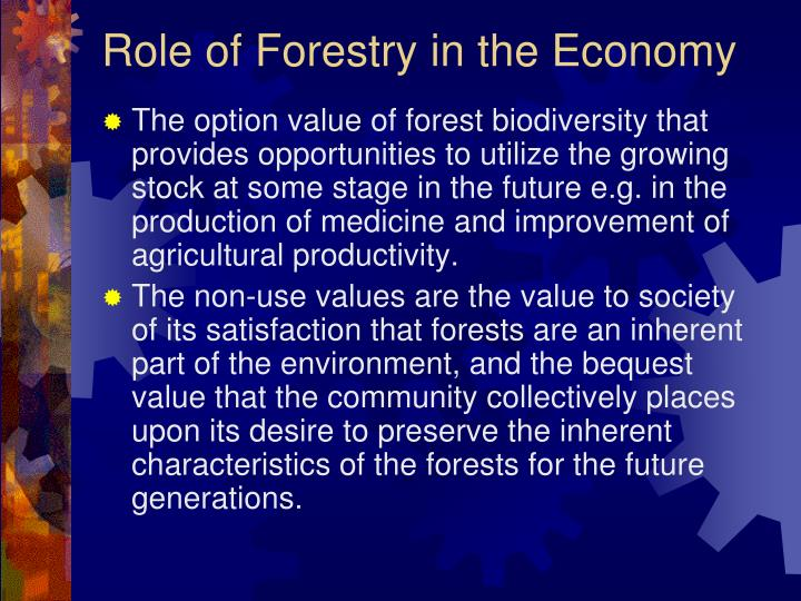 Role of Forestry in the Economy