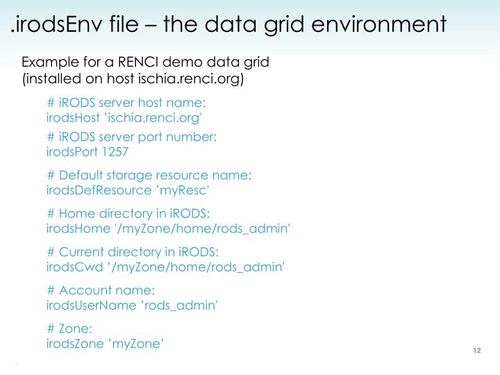 .irodsEnv file – the data grid environment