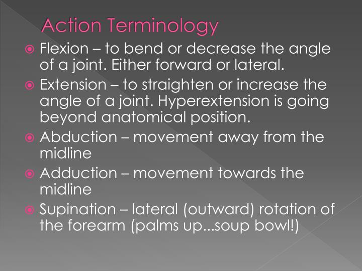 Action Terminology