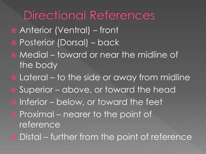 Directional References