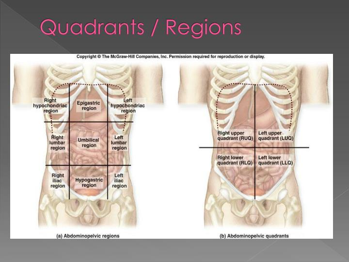 Quadrants / Regions
