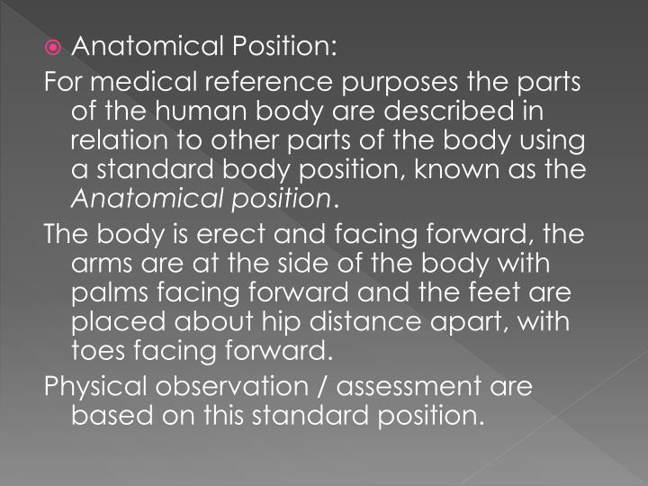 Anatomical Position: