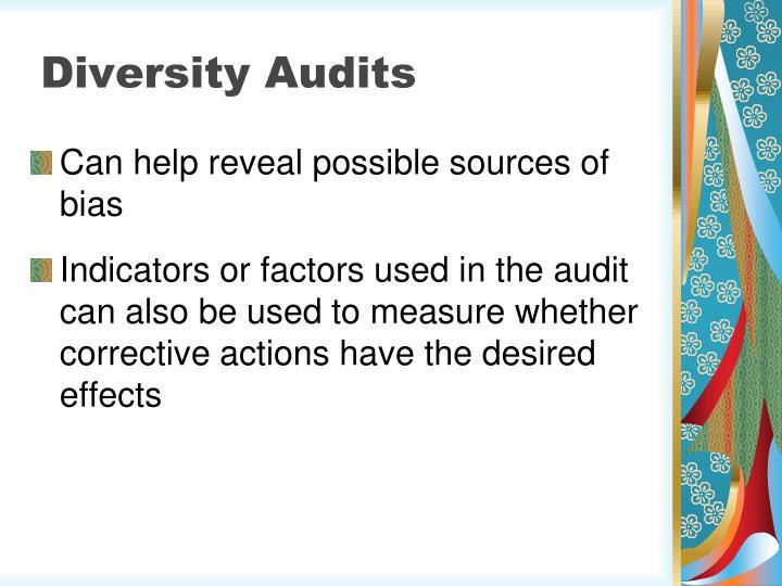 Diversity Audits