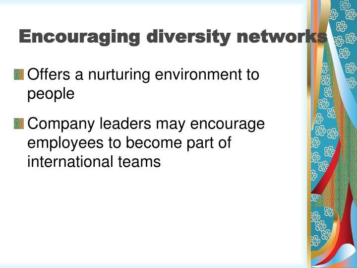 Encouraging diversity networks