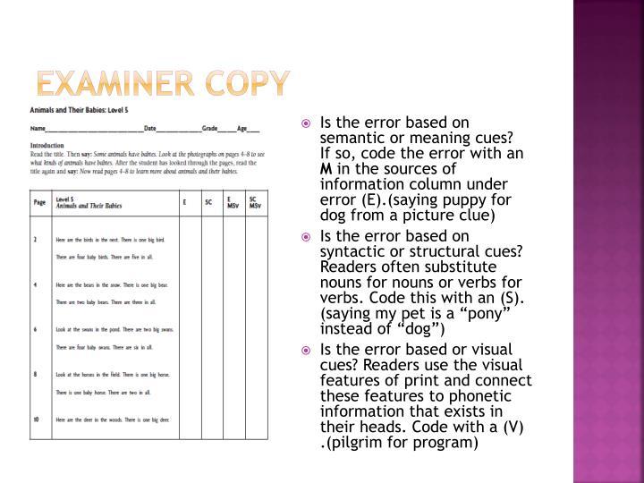 Examiner Copy