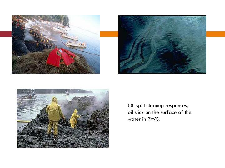 Oil spill cleanup responses, oil slick on the surface of the water in PWS.