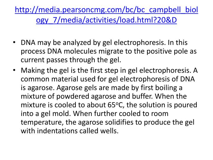 http://media.pearsoncmg.com/bc/bc_campbell_biology_7/media/activities/load.html?20&D
